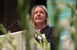 Odense-lærere: Inklusionen volder store problemer